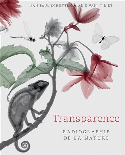 Transparence, radiographie de la nature